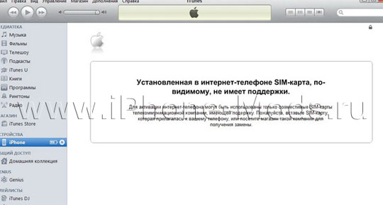Aktivatsiya iPhone bez rodnoi sim karty